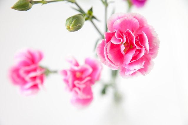 韓国語での「ありがとう」9選!カムサハムニダだけじゃない!友達, 上司など海外出張・赴任・留学に役立つ感謝の言葉